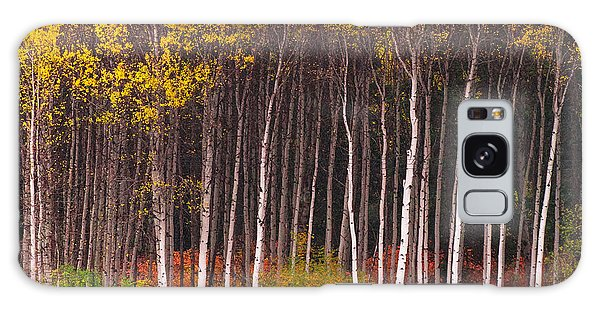 Shades Of Autumn Galaxy Case