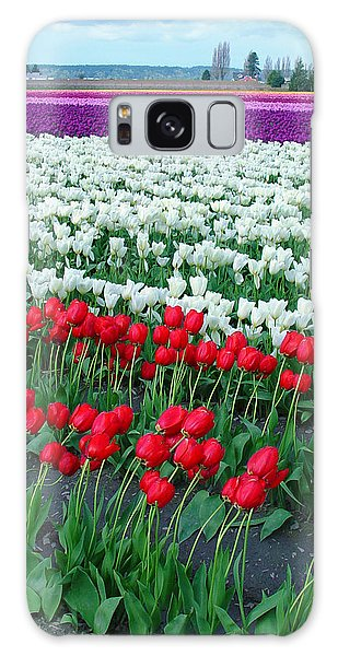 Shades Of Tulips Galaxy Case by John Bushnell