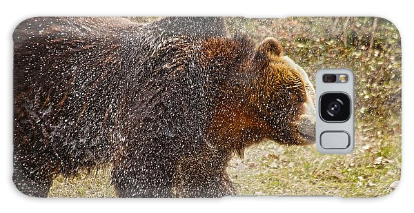 Grizzly Bears Galaxy Case - Shaking It Off by Karol Livote