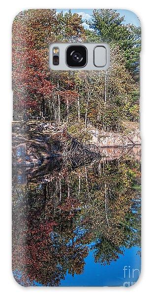 Shambeau Park Fall Reflection Galaxy Case