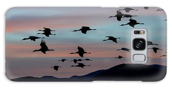 Sandhill Cranes Landing At Sunset 2 Galaxy Case