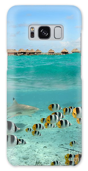 Over-under With Shark And Butterfly Fish At Bora Bora Galaxy Case
