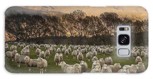 Galaxy Case featuring the photograph Sheep Flock At Dawn Arrowtown Otago New by Colin Monteath, Hedgehog House