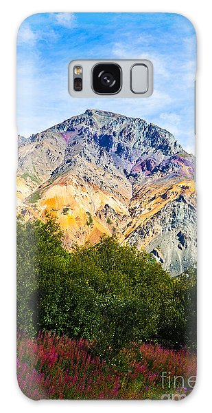 Sheep Mountain Alaska   Galaxy Case