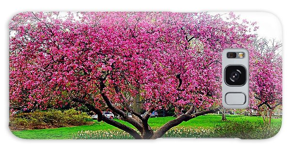 Sherwood Gardens Tree Galaxy Case