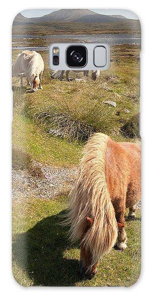Shetland Ponies Galaxy Case