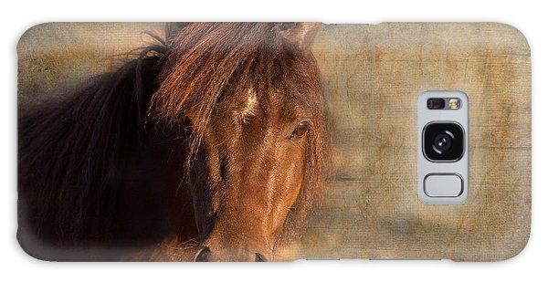 Shetland Pony At Sunset Galaxy Case