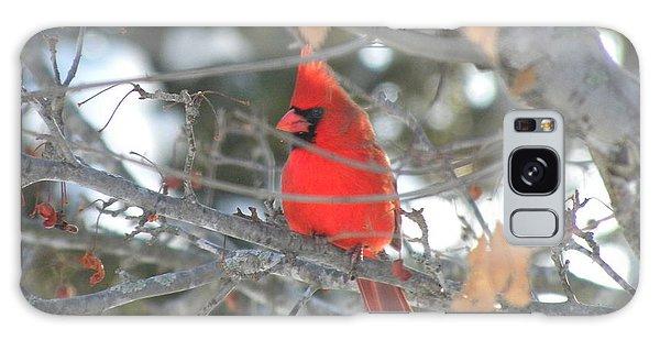 Shining Bright Red Galaxy Case