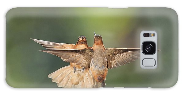 Shining Sunbeam Hummingbirds Galaxy Case