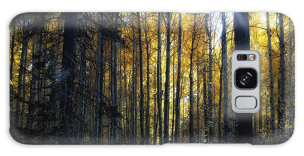 Galaxy Case featuring the photograph Shining Through by Belinda Greb