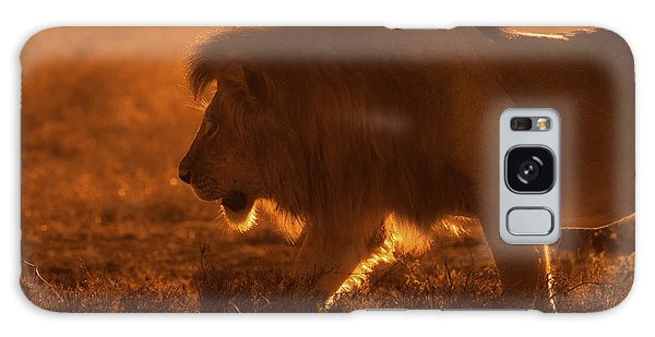 Lion Galaxy Case - Shiny King by Mohammed Alnaser
