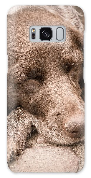 Shishka Dog Dreaming The Day Away Galaxy Case
