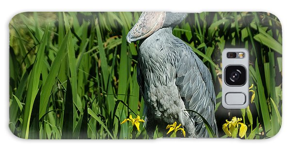 Shoebill Stork Galaxy Case