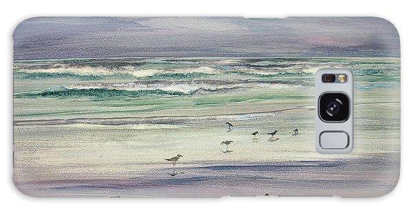 Shoreline Birds IIi Galaxy Case