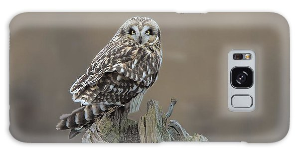 Short Eared Owl Galaxy Case by Daniel Behm