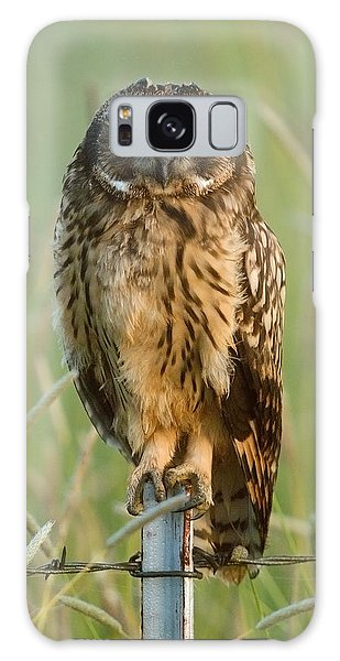 Short-eared Owl Galaxy Case