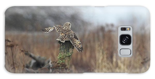 Short Eared Owl In Habitat Galaxy Case by Daniel Behm