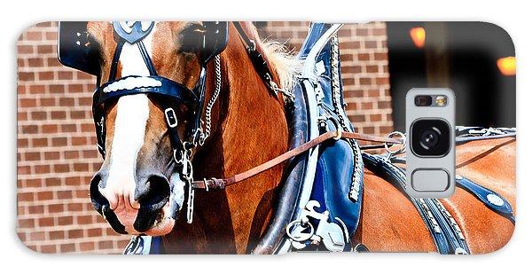 Show Horse Galaxy Case