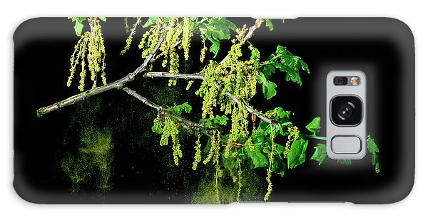 Pollen Galaxy Case - Shower Of Pollen From An Oak Tree by Dr Jeremy Burgess/science Photo Library