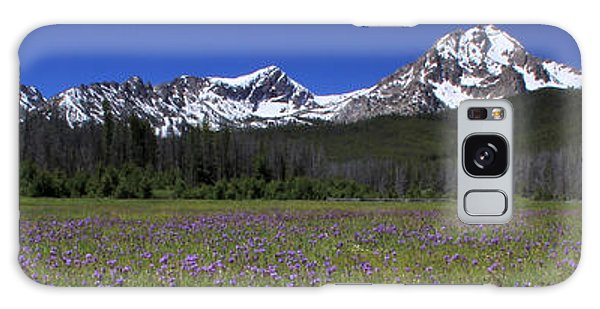 Showy Penstemon Wildflowers Sawtooth Mountains Galaxy Case