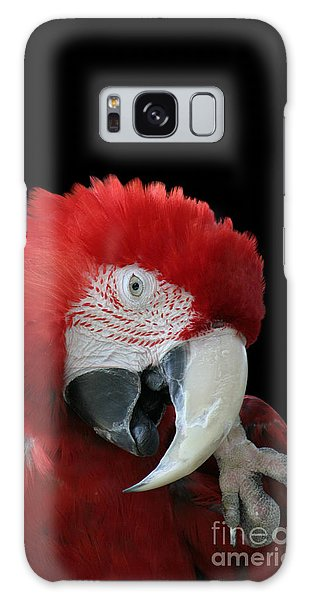 Shy Macaw Galaxy Case by Judy Whitton