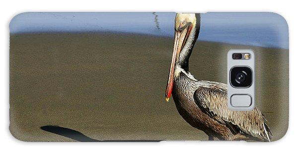 Shy Pelican Galaxy Case by Gandz Photography