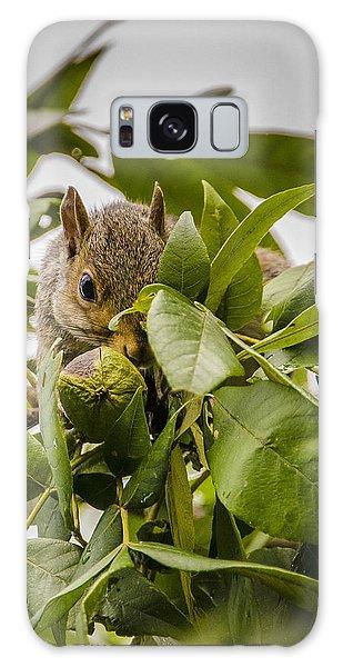 Shy Squirrel Galaxy Case by Bradley Clay