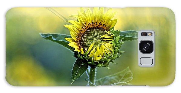 Shy Sunflower Galaxy Case