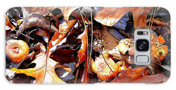 Signs Of Autumn Galaxy Case by Cindy Croal