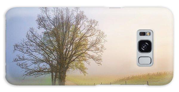 National Park Galaxy Case - Silence Of Days by John Fan
