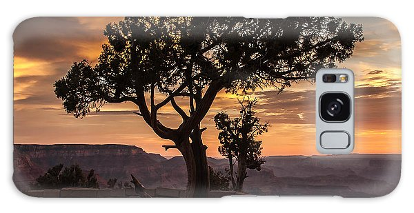 Silhouetted Tree Galaxy Case