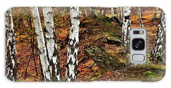Silver Birch Tree Canvas Galaxy Case