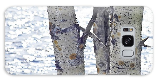 Silver Birch Trees At A Sunny Lake Galaxy Case