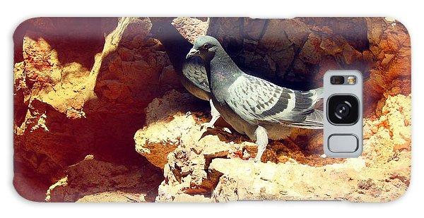 Silver Birds Galaxy Case