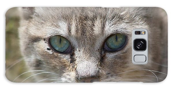 Silver Tabby But What Color Eyes Galaxy Case
