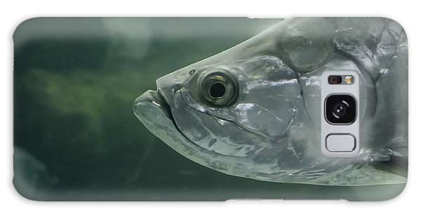 Silver Tarpon Galaxy Case