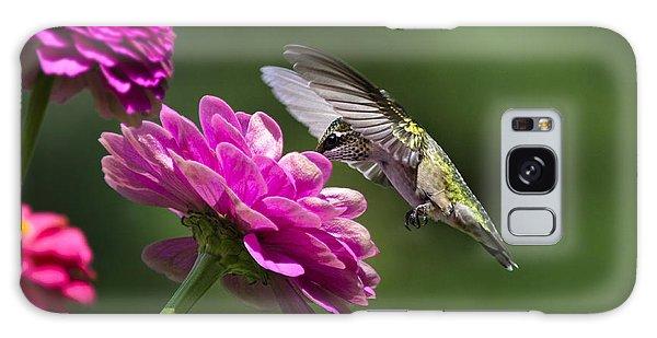 Simple Pleasure Hummingbird Delight Galaxy Case by Christina Rollo