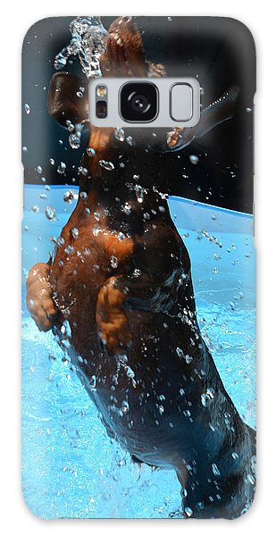 Simple Pleasures Of Romeo The Water Dog Galaxy Case