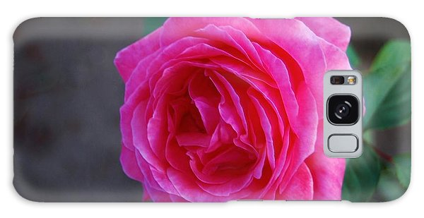 Simply A Rose Galaxy Case by Angela J Wright