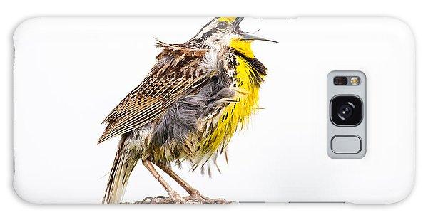 Singing Meadowlark 3rd Of 3 Galaxy Case