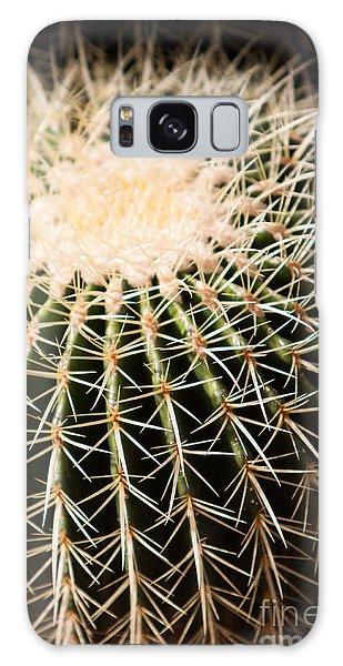Single Cactus Ball Galaxy Case