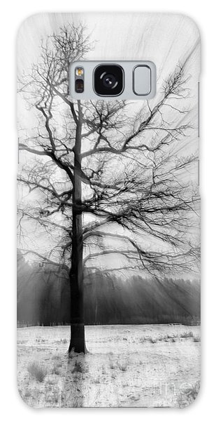Single Leafless Tree In Winter Forest Galaxy Case