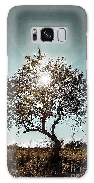 Bright Galaxy Case - Single Tree by Carlos Caetano