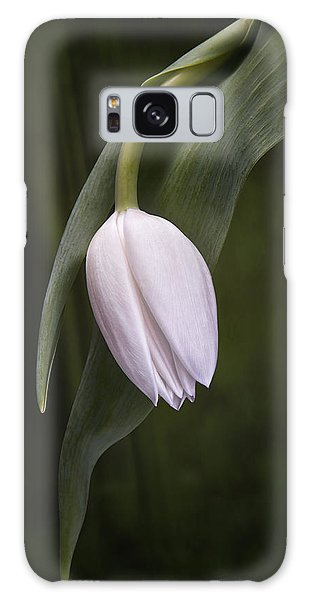 Single Tulip Still Life Galaxy Case