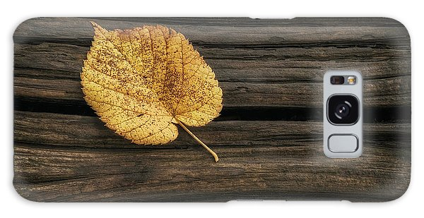 Woods Galaxy Case - Single Yellow Birch Leaf by Scott Norris