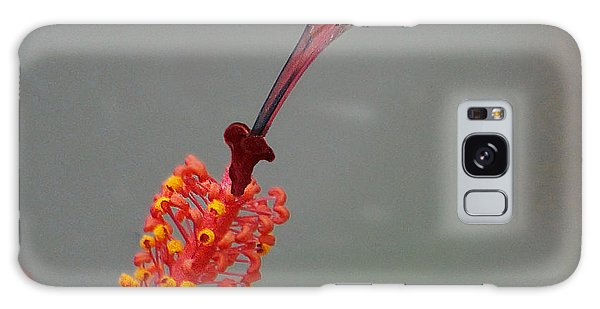 Sipping From A Hibiscus Galaxy Case