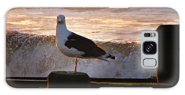 Sittin On The Dock Of The Bay Galaxy Case by David Dehner