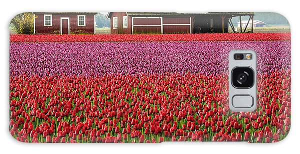 Skagit Valley Crops Galaxy Case