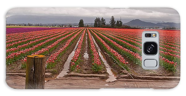 Skagit Valley Tulip Farmlands In Spring Storm Art Prints Galaxy Case by Valerie Garner