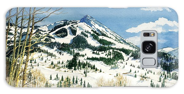Skiers Paradise Galaxy Case by Barbara Jewell